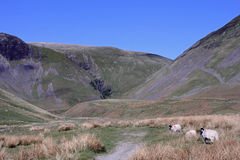 Cautley Spout in the Howgill Fells, Cumbria. Royalty Free Stock Photos