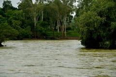 Cauvery河Kushalnagar durting的季风 卡纳塔克邦国家的印度 免版税库存照片