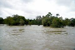 Cauvery河Kushalnagar durting的季风 卡纳塔克邦国家的印度 库存照片