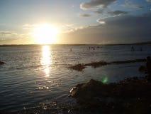 Cauvery flodsolnedgång Arkivbild