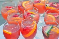Cava Sparkling Wine och frukt arkivbild