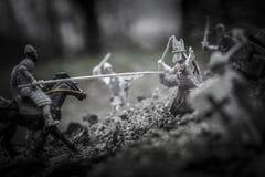 Cavaleiro Foto de Stock