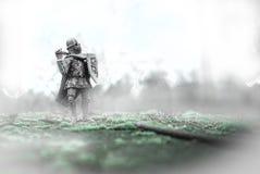 Cavaleiro Fotografia de Stock Royalty Free