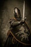 Cavaleiro com espada foto de stock