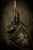 Cavaleiro com espada e protetor imagens de stock