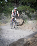 Cavaleiro da bicicleta de montanha Fotos de Stock Royalty Free