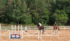 Cavaleiro da moça em um adestramento no parque em um cavalo delgado imagens de stock royalty free