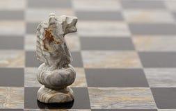 Cavaleiro da parte de xadrez Fotos de Stock Royalty Free