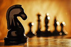 Cavaleiro da xadrez Foto de Stock