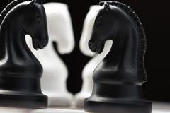 Cavaleiro da xadrez no tabuleiro de xadrez Imagem de Stock Royalty Free