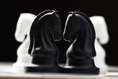 Cavaleiro da xadrez no tabuleiro de xadrez Fotografia de Stock