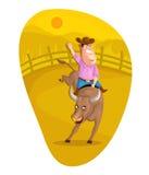 Cavaleiro de Bull Imagens de Stock Royalty Free