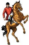 Cavaleiro do cavalo Fotos de Stock
