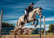 Cavaleiro do cavalo na ação sob o céu azul Foto de Stock