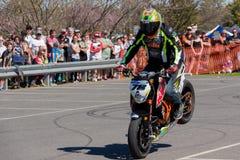 Cavaleiro do conluio da motocicleta - Stoppie Fotografia de Stock Royalty Free