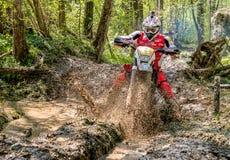 Cavaleiro do motocross que espirra a lama no terreno molhado e enlameado Competições abertas no motocross na província de Varese Imagens de Stock
