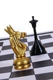 Cavaleiro do ouro Foto de Stock