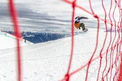 Cavaleiro do Snowboard que deixa cair no halfpipe fotos de stock royalty free