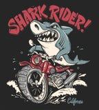 Cavaleiro do tubarão no projeto do t-shirt do vetor da motocicleta ilustração stock