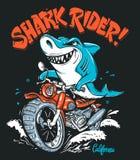 Cavaleiro do tubarão no projeto do t-shirt do vetor da motocicleta ilustração royalty free