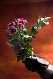 Cavaleiro e flores imagens de stock