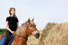 Cavaleiro elegante Foto de Stock Royalty Free