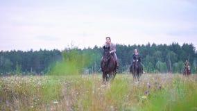 Cavaleiro fêmea novo que galopa a cavalo no campo video estoque