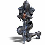 Cavaleiro fêmea da fantasia Fotografia de Stock Royalty Free