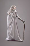 Cavaleiro fêmea na armadura de brilho Foto de Stock