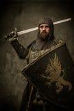 Cavaleiro na armadura completa fotografia de stock royalty free
