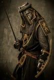Cavaleiro na armadura completa Fotos de Stock Royalty Free