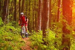 Cavaleiro na bicicleta da montanha ele a floresta Fotografia de Stock Royalty Free