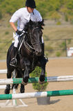 Cavaleiro na mostra de salto Imagens de Stock Royalty Free