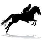 Cavaleiro no cavalo 3 Foto de Stock Royalty Free