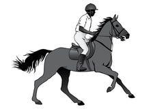 Cavaleiro no cavalo Fotografia de Stock Royalty Free