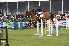 Cavaleiro no cavalo em Saumur França Foto de Stock Royalty Free