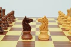 Cavaleiro no centro do tabuleiro de xadrez Fotografia de Stock Royalty Free