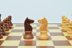 Cavaleiro no centro do tabuleiro de xadrez Imagem de Stock Royalty Free