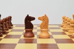 Cavaleiro no centro do tabuleiro de xadrez Fotos de Stock