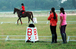 Cavaleiro novo do cavalo Fotos de Stock Royalty Free