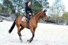 Cavaleiro novo na floresta Fotos de Stock