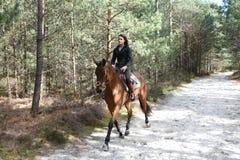 Cavaleiro novo na floresta Imagens de Stock