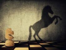 Cavaleiro selvagem Foto de Stock Royalty Free