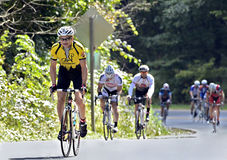 Cavaleiros da bicicleta em uma estrada da montanha Fotos de Stock