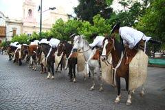 Cavaleiros de Argentina Fotos de Stock Royalty Free