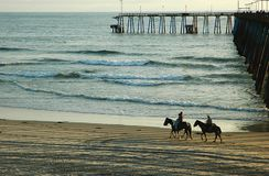 Cavaleiros de Horseback Foto de Stock