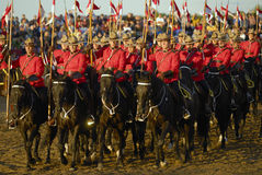 Cavaleiros de RCMP Fotos de Stock Royalty Free