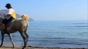 Cavaleiros não identificados em cavalos na praia filme