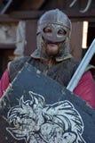 Cavaleiros Viquingues Imagens de Stock