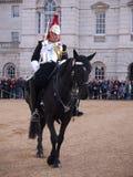 Cavalerie de ménage au défilé de dispositifs protecteurs de cheval Photo libre de droits